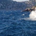 Pure Océan Recherche scientifique fond protection océan